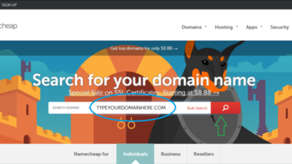 The Ultimate Guide for Domain Names