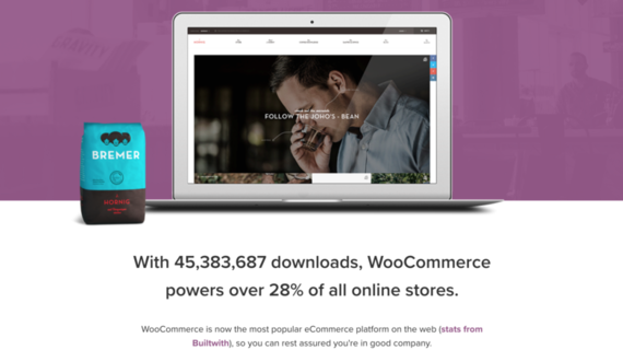 Large woocommerce stats