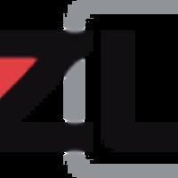 Large bizzuka logo punchout
