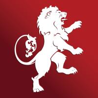 Large imagine logo