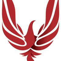 Large logo 29